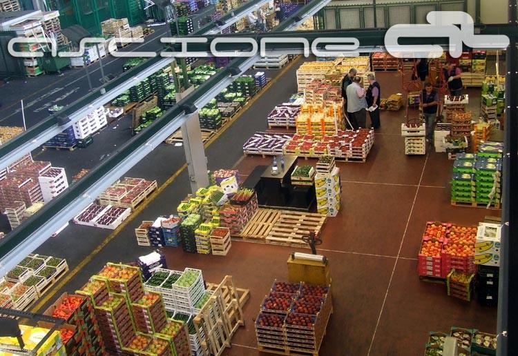 Ascione01 ascione srl mercato orto frutta milano for Mercato frutta e verdura milano